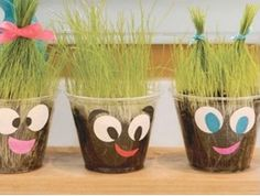 Create grass heads for kids to learn about plants and how they drink water!