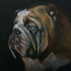 291 - #wip, laying down some background of more wrinkles on this beautiful bulldog face. #panpastel#generalscharcoal#animal_artists#creative_animalart#artnerd#art_collective#worldofpencils#drawanyway#creativempire#art_spotlight#artistdrop#artists_magazine#worldofartists#artofdrawingg#proartists#bestartdaily#willdrawteam#animaldrawing#animalartwork#animalcreatives#animalsofinstagram#bulldog