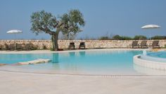 Borgobianco Resort & Spa: Soak up the rays by the outdoor pool which overlooks vineyards and olive groves.