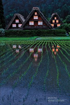 Shirakawago, Gifu, Japan <--- Essentially what I've envisioned my paradise home being; In Japan, surrounded by forest, other people nearby, in a large cabin... #WITCHERYSTYLE
