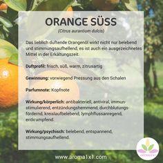 Das lieblich duftende Orangenöl wirkt nicht nur belebend und stimmungsaufhellend, es ist auch ein ausgezeichnetes Mittel in der Erkältungszeit.