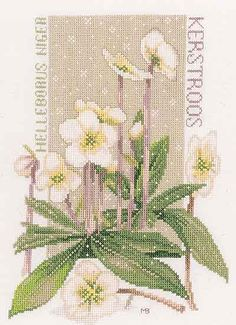 Pure White - cross stitch kit by Marjolein Bastin - A pretty sampler Christmas roses with flakes of snow. Cross Stitch Kits, Cross Stitch Designs, Cross Stitching, Cross Stitch Embroidery, Marjolein Bastin, Christmas Rose, White Crosses, Cross Stitch Flowers, White Flowers
