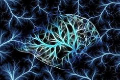 Psychedelic drug psilocybin tamps down brain's ego center - Neuroscience News Reticular Activating System, People With Schizophrenia, Nmda Receptor, Brain Neurons, Psychedelic Drugs, Auditory Processing, Magnetic Resonance Imaging, Preschool Special Education, Behavioral Science