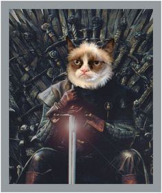 Game Of Thrones Poster, Kitty Games, Bulldog, Portraits, Jolie Photo, Grumpy Cat, Movie Posters, People, Gatos