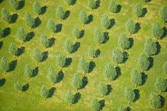 pattern aerial shots by Jason Hawkes - beautiful... will find a use for them in a project one day!