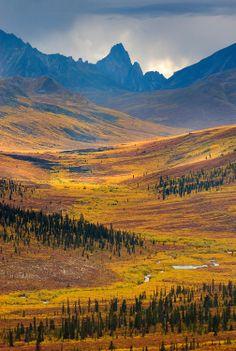 North Klondike River Valley displaying vibrant colors of autumn foliage, Tombstone Territorial Park, Yukon, Canada by Alan Majchrowicz - Canada Travel Design Set, New Hampshire, Woodstock, Yukon Canada, Discover Canada, Yukon Territory, Canada Destinations, Northwest Territories, Visit Canada