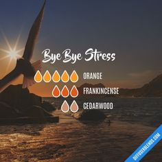 Bye Bye Stress - Essential Oil Diffuser Blend, calm, relax, wind down Essential Oils 101, Essential Oil Diffuser Blends, Young Living Essential Oils, Essential Oil Stress, Doterra Diffuser, Cedarwood Essential Oil, Doterra Oil, Diffuser Recipes, Aromatherapy Oils