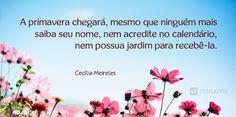 frases de mulheres, mulher, dia da mulher ~~~ A poetisa e pintora Cecília Meireles é uma das figuras mais importantes da literatura brasileira.  A sua sensibilidade e inteligência emocional é um exemplo! O que essa mensagem quer dizer? Que dias melhores virão! 8. Se convença que as mudanças dependem de nós mesmos…