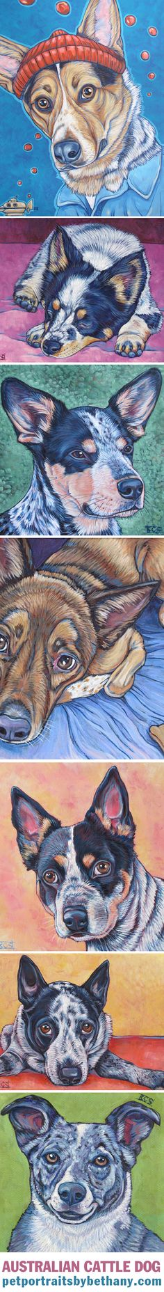 Australian Cattle Dogs (Blue Heelers and Red Heeler) by Bethany.