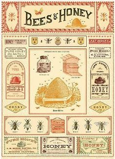 Bees and Honey Poster 20X28