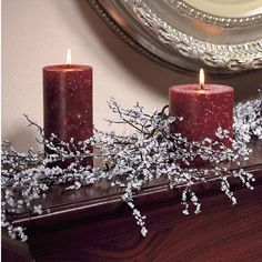 HOW TO MAKE ICED BRANCHES