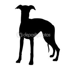 Whippet dog black silhouette — Stock Illustration #106629784