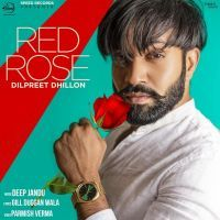 Red Rose Dilpreet Dhillon Mp3 Song Download Riskyjatt Com Mp3 Song Red Roses Songs