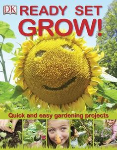 Ready set grow: Quick and easy gardening projects