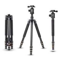 Introducing Mactrem Q666 645 Portable Magnesium Aluminum Detachable Monopod Professional Camera Tripod 360degree Ball Head 14 Quick Release Plate and for DigitalVideoDSLR Cameras  33lbs 15kg Max Load. Great Product and follow us to get more updates!