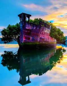 Homebush Bay, Australia - Amazing Images & Photos