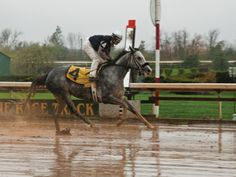 Fort Erie Race Track gets deal