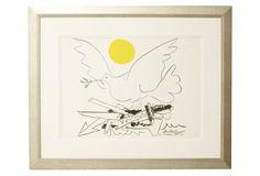 Picasso, Dove of Peace DNU