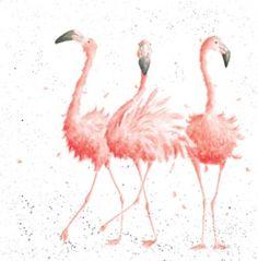 MPZ008 - Pink Ladies