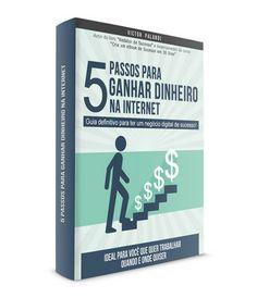5 Passos para Ganhar Dinheiro na Internet   Palandi Network