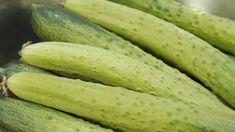 전통 방식 그대로 오이지 무르지 않게 담그는방법 Pickles, Cucumber, Vegetables, Food, Vegetable Recipes, Eten, Pickle, Veggie Food, Pickling