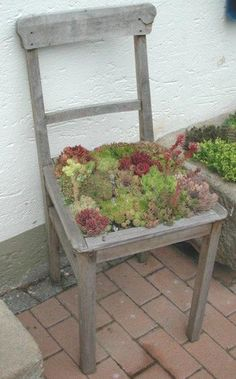 recycled old chair, pretty neat