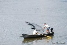 Danube, Silistra, Bulgaria #Bulgaria  fishing #Danube #Tutrakan