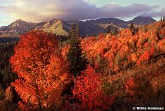 """Utah Mountains in the fall 