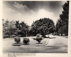 1926 Photo At Lincoln Road  Lincoln Road at Collins Avenue, showing the island in Lincoln Road and the tree planted by James Whitcomb Riley.