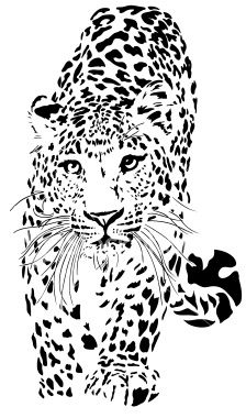 Leopard illustration Royalty Free Stock Vector Art Illustration