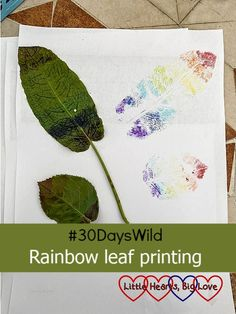 #30DaysWild - Rainbow leaf printing - Little Hearts, Big Love Create Picture, Marker Pen, Big Love, Different Patterns, Leaf Prints, Rainbow Colors, Arts And Crafts, Blog, Rainbow Colours