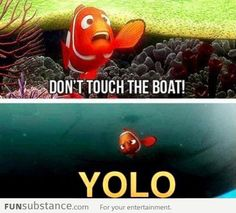 Nemo's YOLO