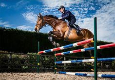 Equestrian rider on horseback frozen above an obstacle while performing jump. Beautiful shiny brown horse distinguishes against the blue sky. Horse Photography, Lifestyle Photography, Jump Over, Brown Horse, Horse Racing, Equestrian, Sky, Horses, Animals