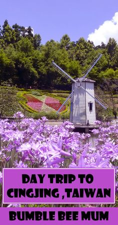 Cingjing day trip from Taichung - Bumble Bee Mum  http://bumblebeemum.net/2015/10/20/day-trip-to-cingjing-from-taichung-in-summer-june/