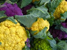 Fresh, locally grown cauliflower. Beautiful.