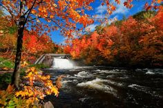 autumn in quebec canada wallpaper The Places Youll Go, Great Places, Places To Go, Scenery Pictures, Canada, Montreal Quebec, Merida, Wallpaper Backgrounds, Wallpapers