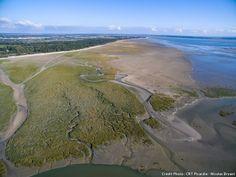 Plage de la Maye baie de Somme Nature, Calais, Outdoor, Coins, Nice Beach, Places, Beauty, Travel, Outdoors