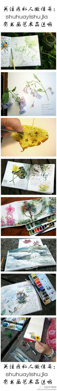 sketch book of Cathy Johnson (water color artist)