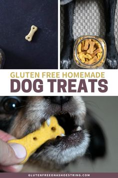 Homemade crunchy pumpkin peanut butter gluten free dog treats have just 4 ingredients and make a great hostess gift for your friends with furry friends! #HomemadeDogTreatsForSkin