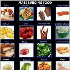 Building muscles food!