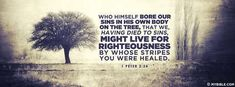 1 Peter 2:24 NKJV - Bore Our Sins In His Own Body - Facebook Cover Photo