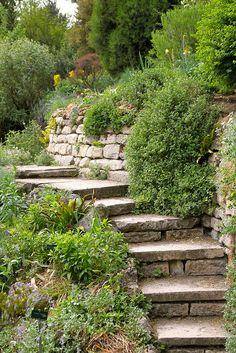 hillside landscape - no side wall / rail Hillside Garden, Hillside Landscaping, Landscaping With Rocks, Front Yard Landscaping, Landscaping Ideas, Backyard Patio, Backyard Ideas, Garden Steps, Garden Paths