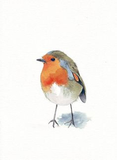 Robin Painting bird Print of watercolor painting by Splodgepodge