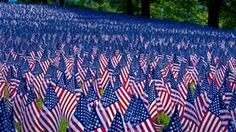 Memorial Day field of flags - Bing images