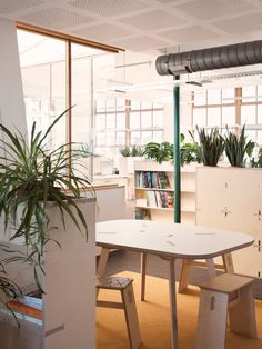 Greenpeace office by opendesk.cc
