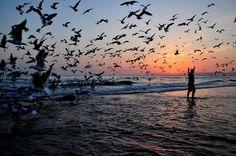 Wings of Imagination by João Coutinho, via 500px