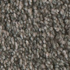 Stainmaster Soul Mate Mentor Textured Indoor Carpet La Z