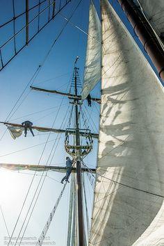 Mariners i veles del bergantí Cyrano.