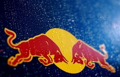 hd red bull logo wallpapers