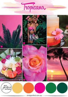It's like being in the tropics! Such bright and vibrant tones...gorgeous!